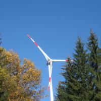 Hamberger Windrad zwischen Bäumen und vor blauem Himmel