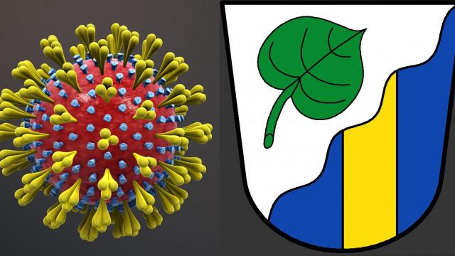 3D-Animation des Corona-Virus'